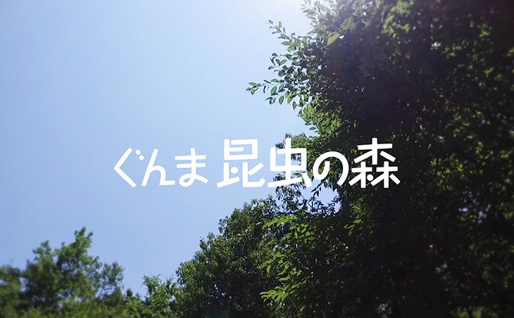 giw_ec